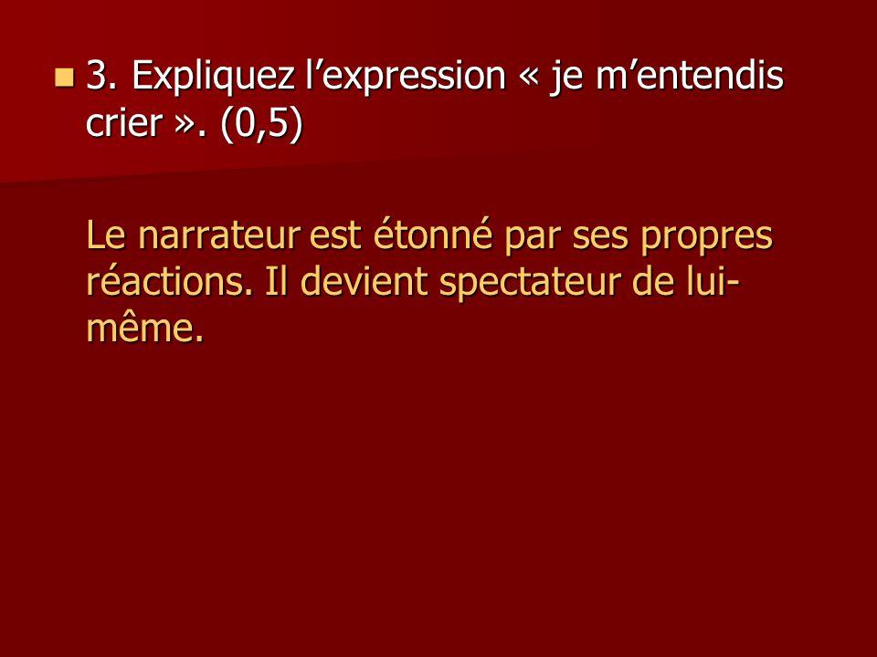 3. Expliquez l'expression « je m'entendis crier ». (0,5)