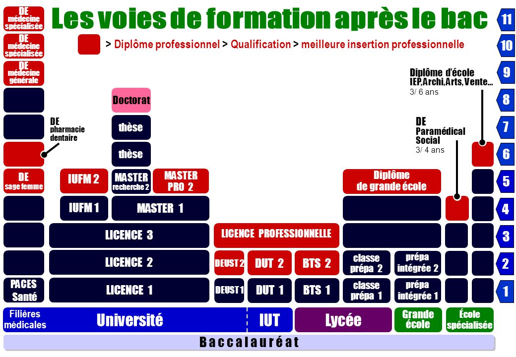 les voies de formation post-bac