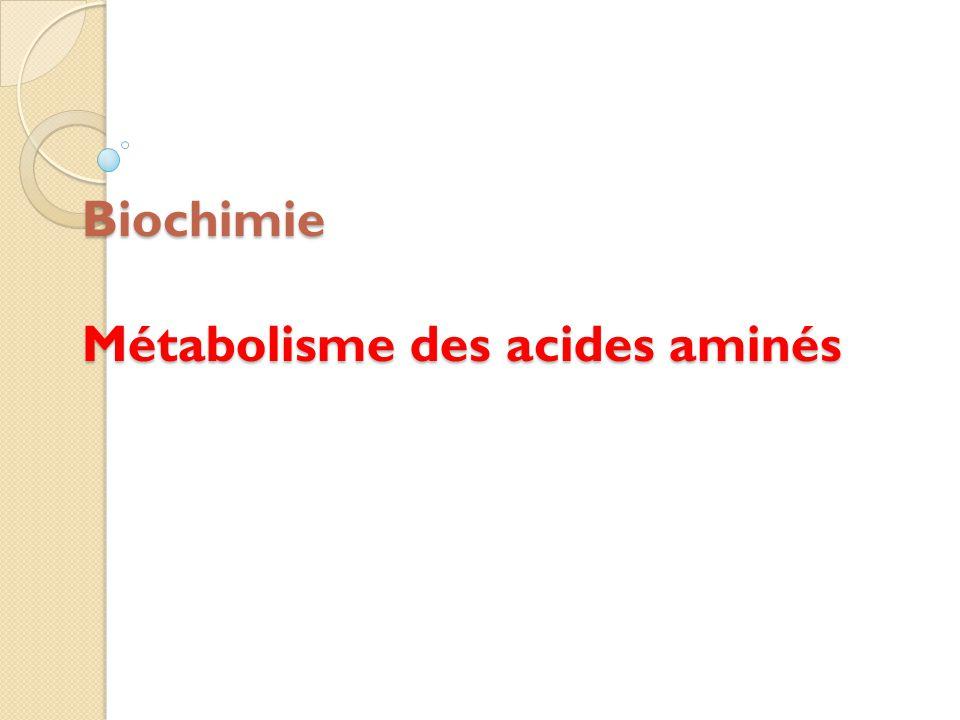 Biochimie Métabolisme des acides aminés
