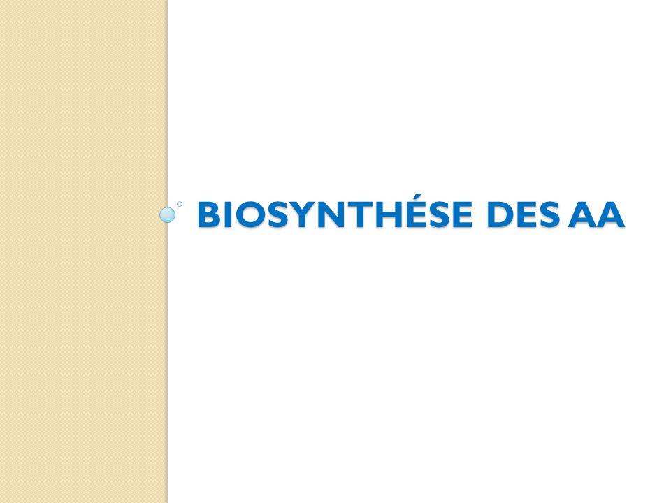 Biosynthése des aa