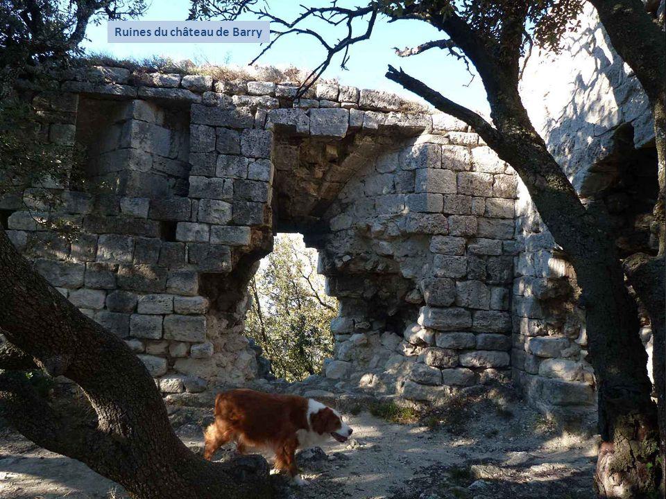 Ruines du château de Barry