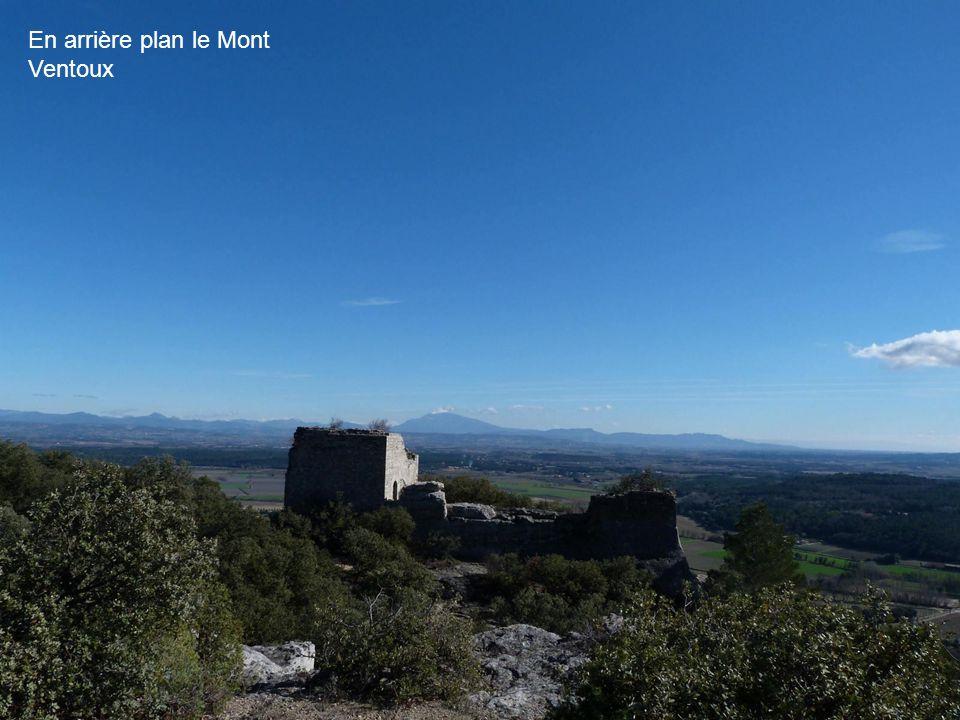 En arrière plan le Mont Ventoux