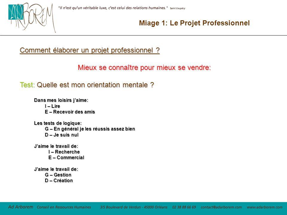 miage 1  le projet professionnel