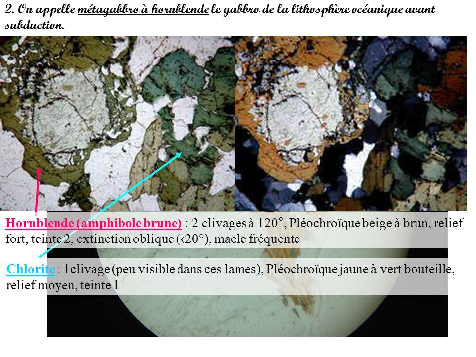 2. On appelle métagabbro à hornblende le gabbro de la lithosphère océanique avant subduction.