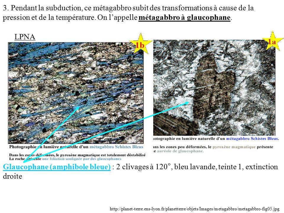 3. Pendant la subduction, ce métagabbro subit des transformations à cause de la pression et de la température. On l'appelle métagabbro à glaucophane.