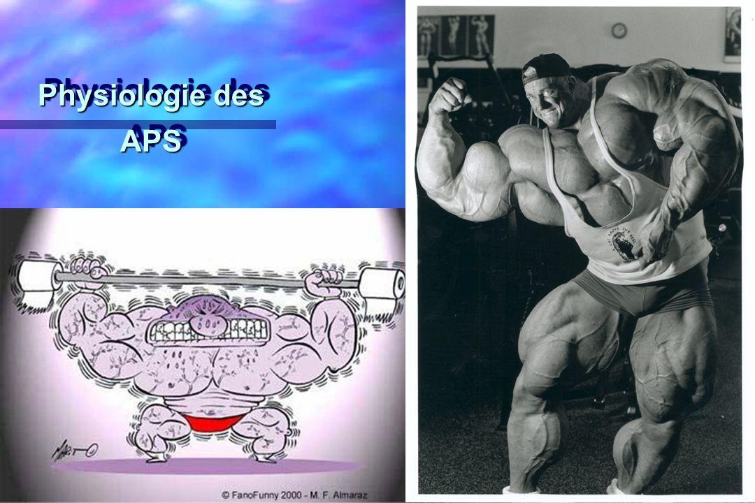 Physiologie des APS