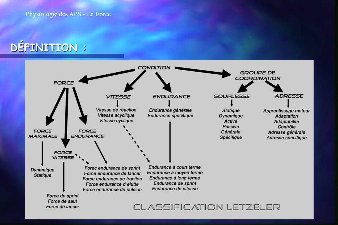 Physiologie des APS - La Force