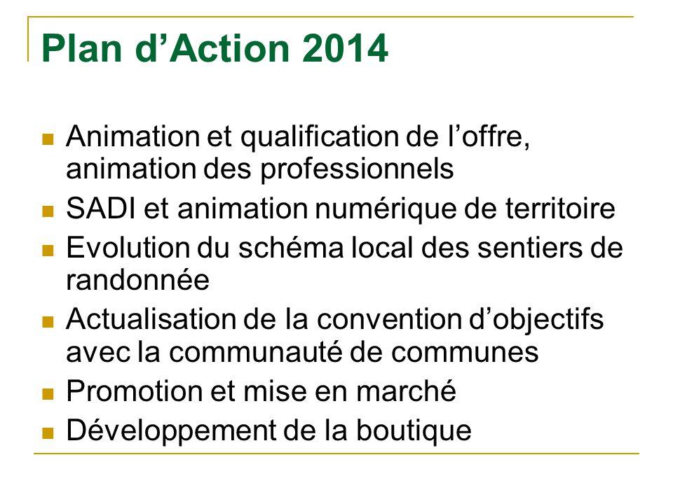 Plan d'Action 2014 Animation et qualification de l'offre, animation des professionnels. SADI et animation numérique de territoire.