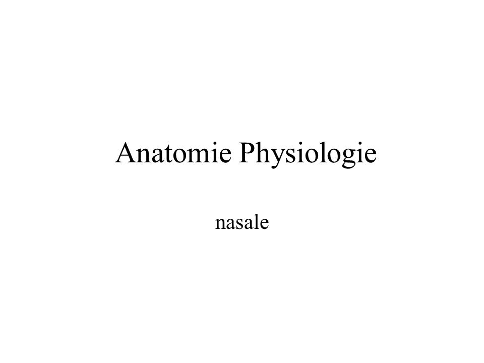 Anatomie Physiologie nasale