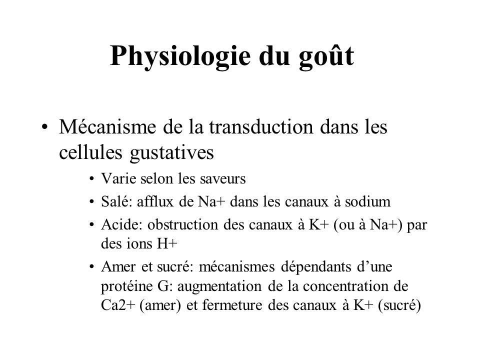 Physiologie du goût Mécanisme de la transduction dans les cellules gustatives. Varie selon les saveurs.