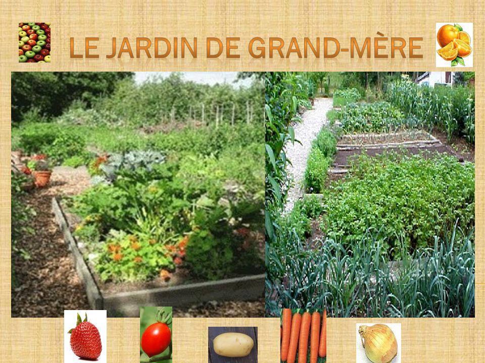 LE JARDIN DE GRAND-MÈRE - ppt video online télécharger