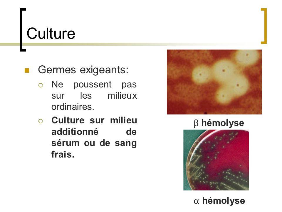 Culture Germes exigeants: Ne poussent pas sur les milieux ordinaires.