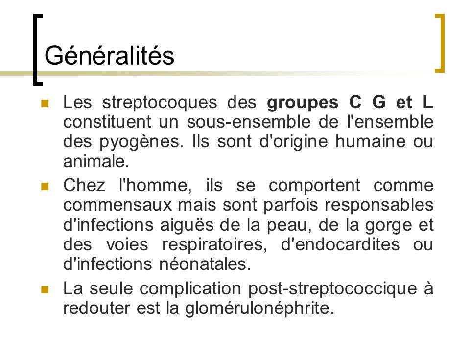 Généralités Les streptocoques des groupes C G et L constituent un sous-ensemble de l ensemble des pyogènes. Ils sont d origine humaine ou animale.