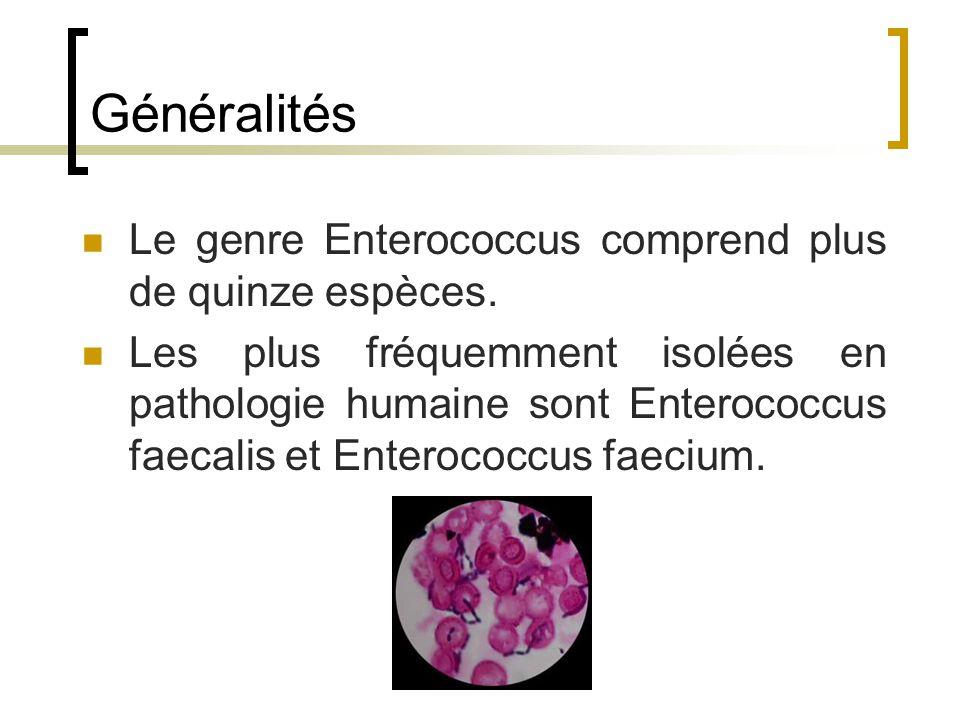 Généralités Le genre Enterococcus comprend plus de quinze espèces.