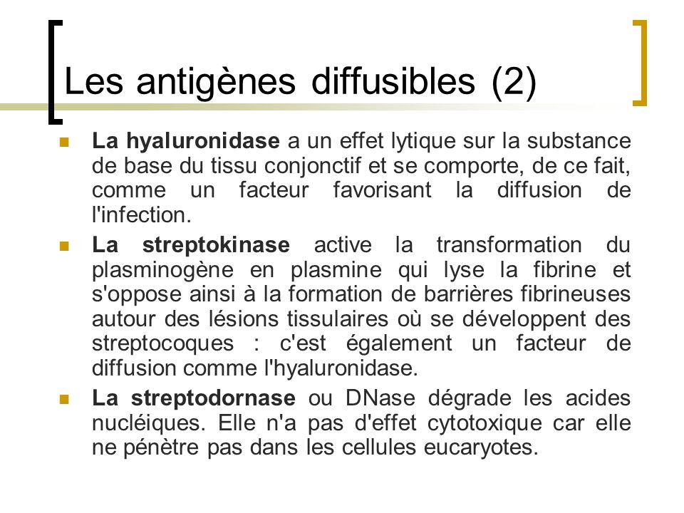 Les antigènes diffusibles (2)