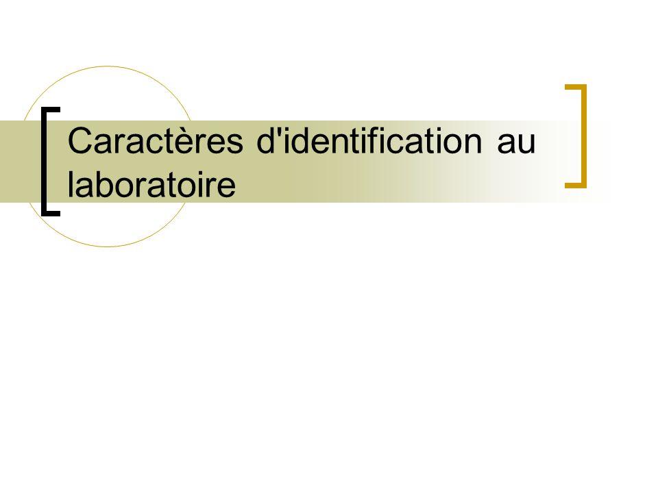 Caractères d identification au laboratoire