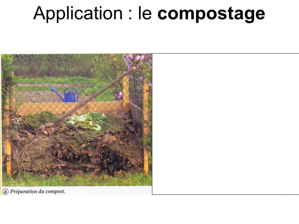 Application : le compostage