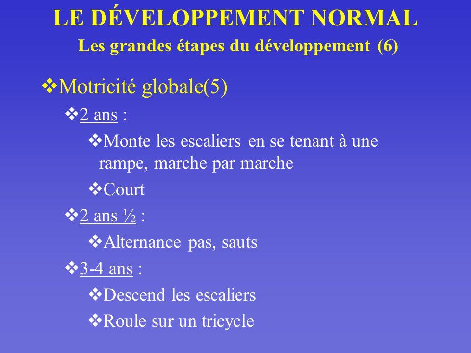 LE DÉVELOPPEMENT NORMAL Les grandes étapes du développement (6)