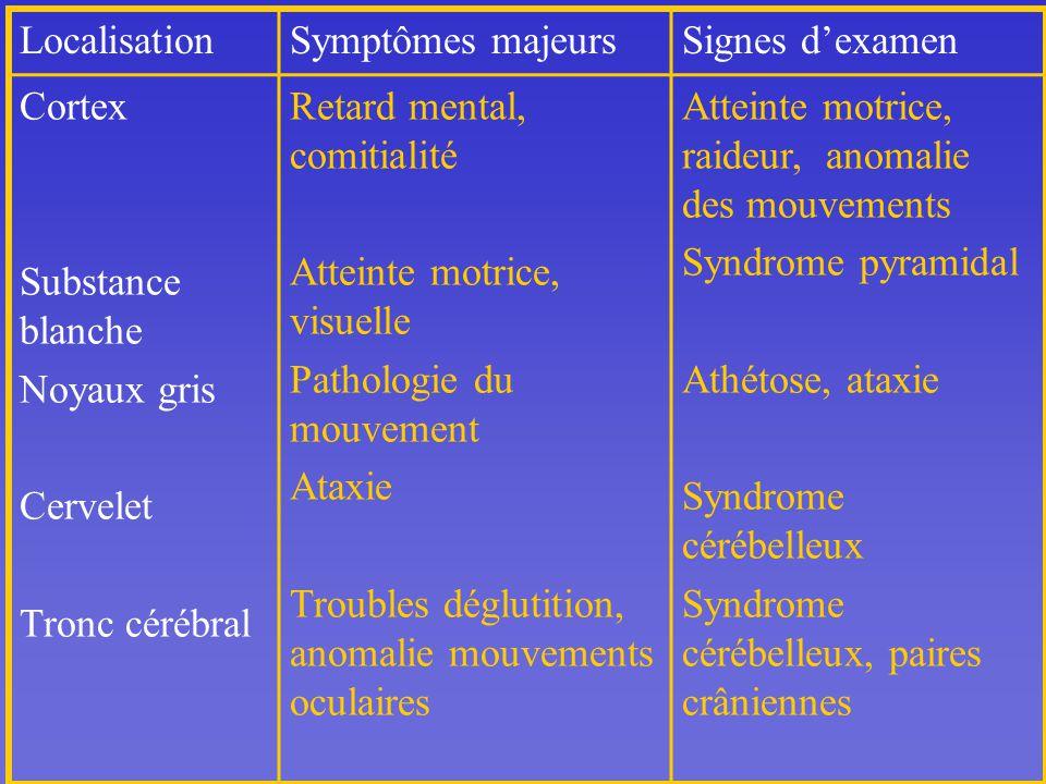Localisation Symptômes majeurs. Signes d'examen. Cortex. Substance blanche. Noyaux gris. Cervelet.