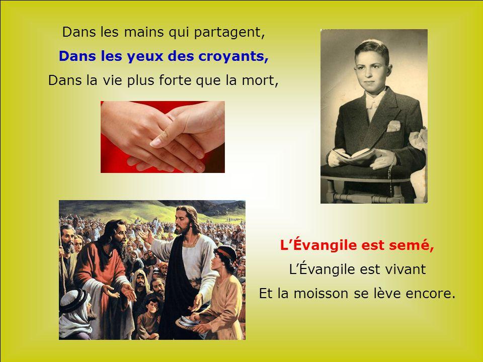 Dans les mains qui partagent, Dans les yeux des croyants,