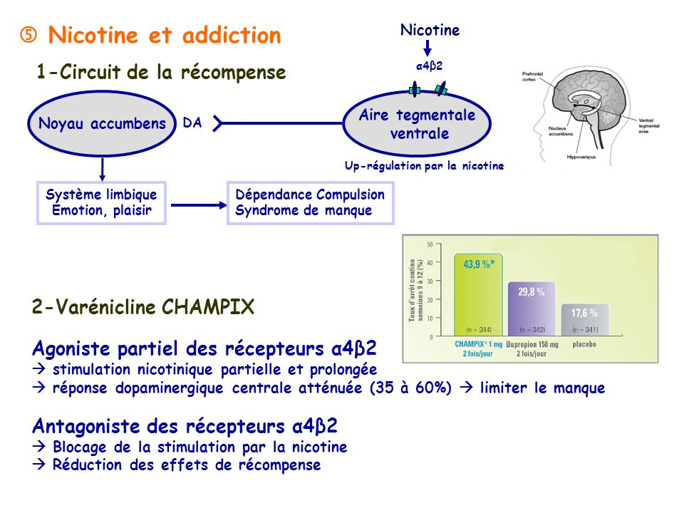 12/10/ h-10h30 DCEM1 Pharmacologie Semestre 1 - ppt video