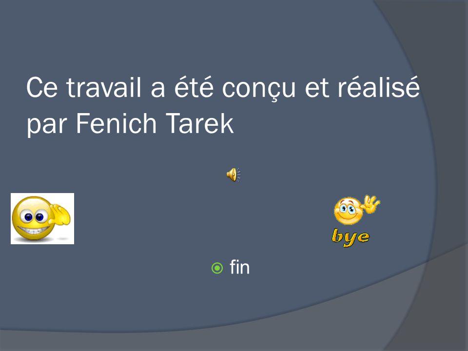 Ce travail a été conçu et réalisé par Fenich Tarek