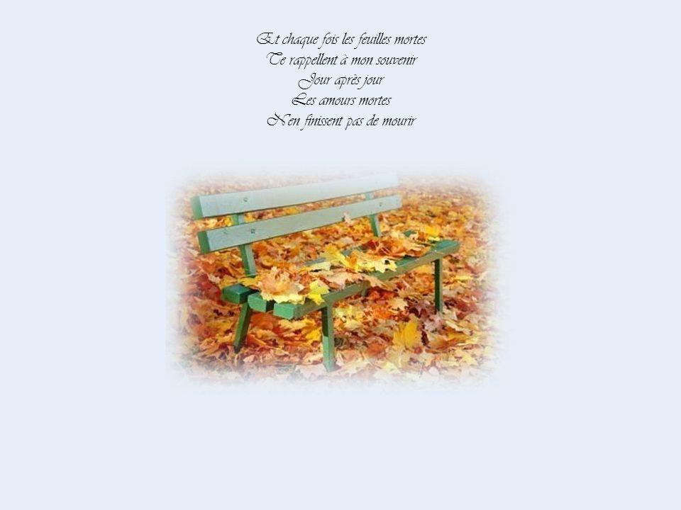 Et chaque fois les feuilles mortes Te rappellent à mon souvenir