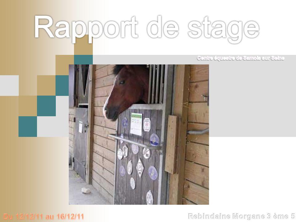 Rapport de stage Du 12/12/11 au 16/12/11 Rebindaine Morgane 3 ème 5