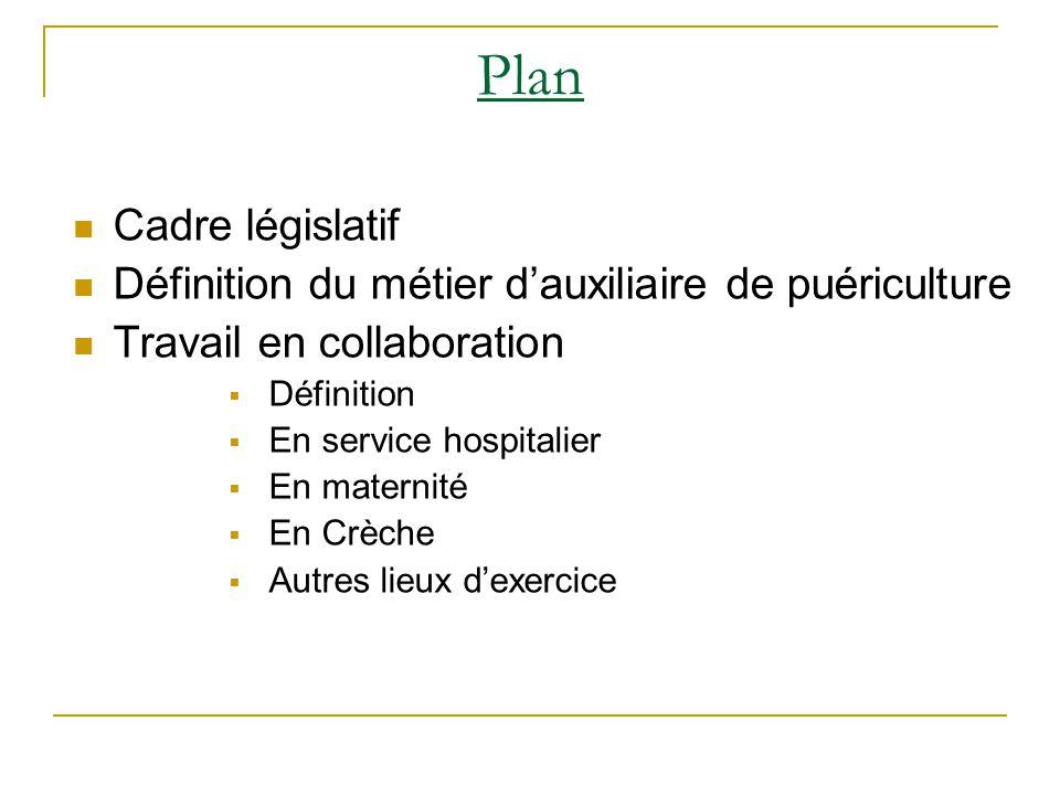 Plan Cadre législatif. Définition du métier d'auxiliaire de puériculture. Travail en collaboration.