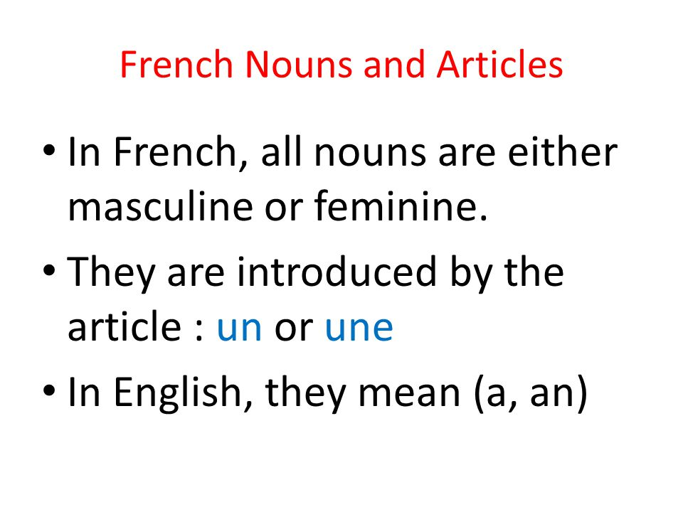French Nouns and Articles