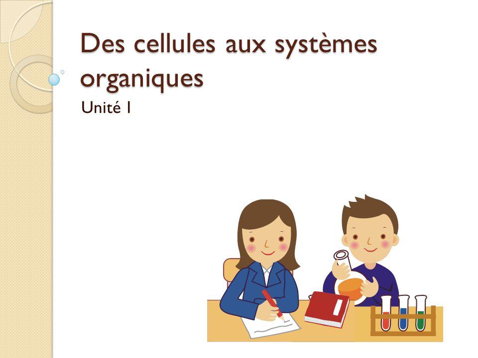 Des cellules aux systèmes organiques