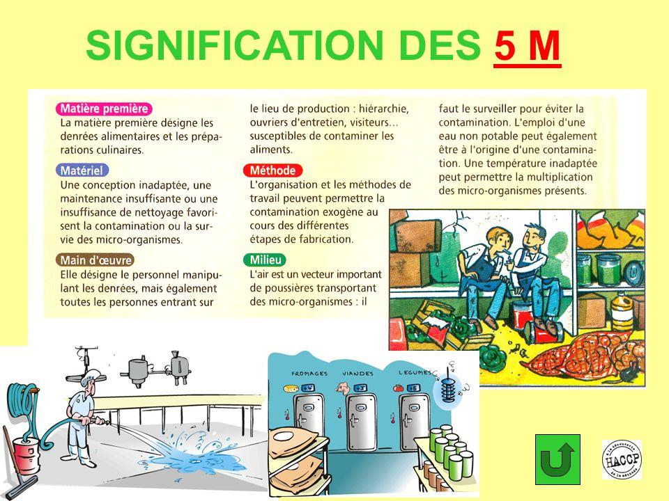 SIGNIFICATION DES 5 M