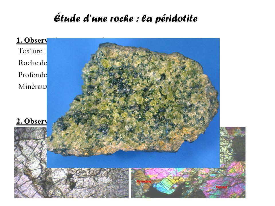 Étude d'une roche : la péridotite