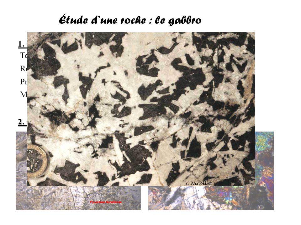 Étude d'une roche : le gabbro