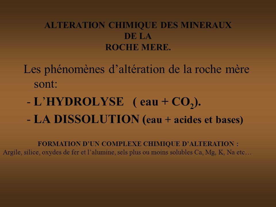 ALTERATION CHIMIQUE DES MINERAUX DE LA ROCHE MERE.