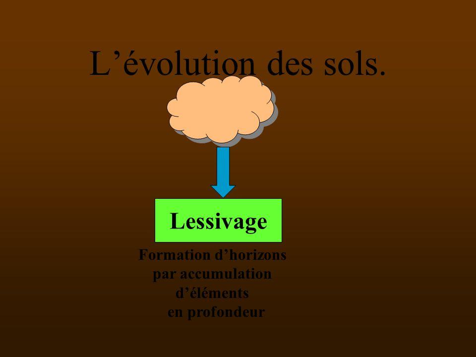 L'évolution des sols. Lessivage Formation d'horizons par accumulation