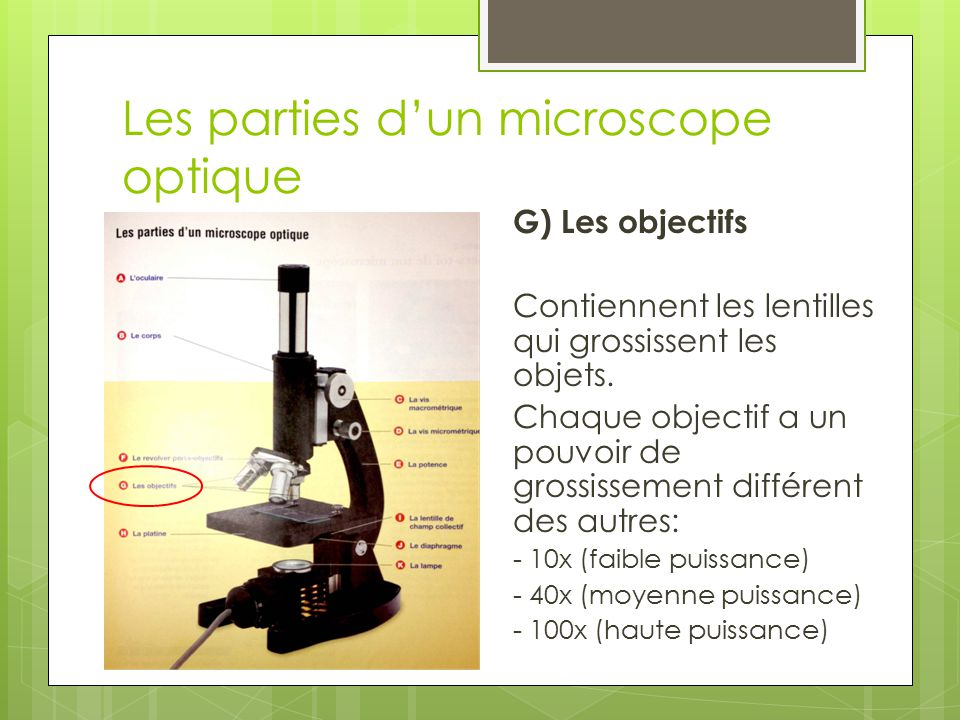 Les parties d'un microscope optique
