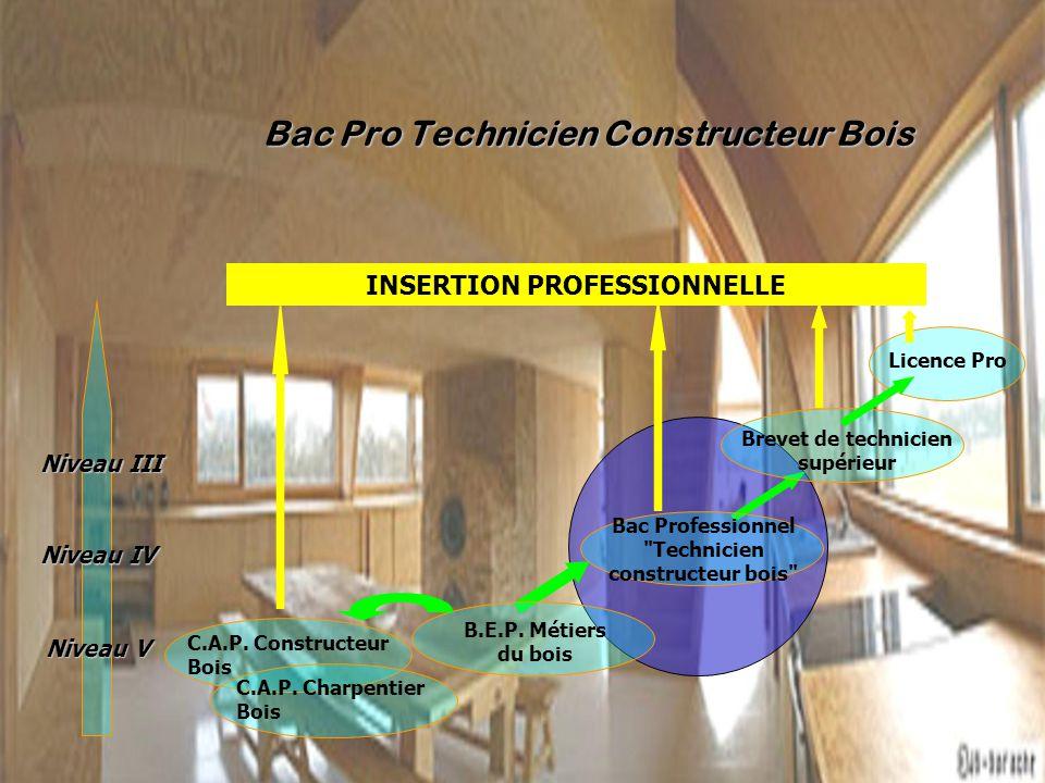 RENOVATION DES DIPLOMES ppt télécharger # Bac Pro Technicien Constructeur Bois