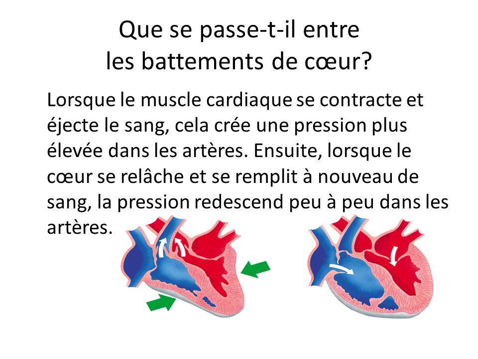 Que se passe-t-il entre les battements de cœur