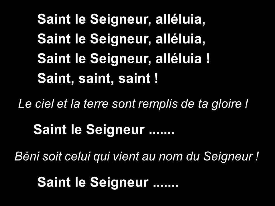 Saint le Seigneur, alléluia, Saint le Seigneur, alléluia !