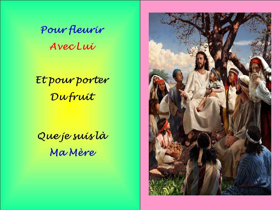Pour fleurir Avec Lui Et pour porter Du fruit Que je suis là Ma Mère