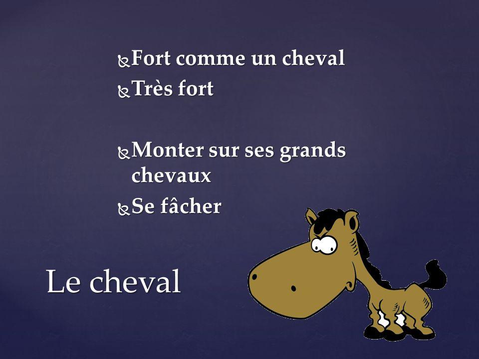 vocabulaire fran 231 ais ppt t 233 l 233 charger