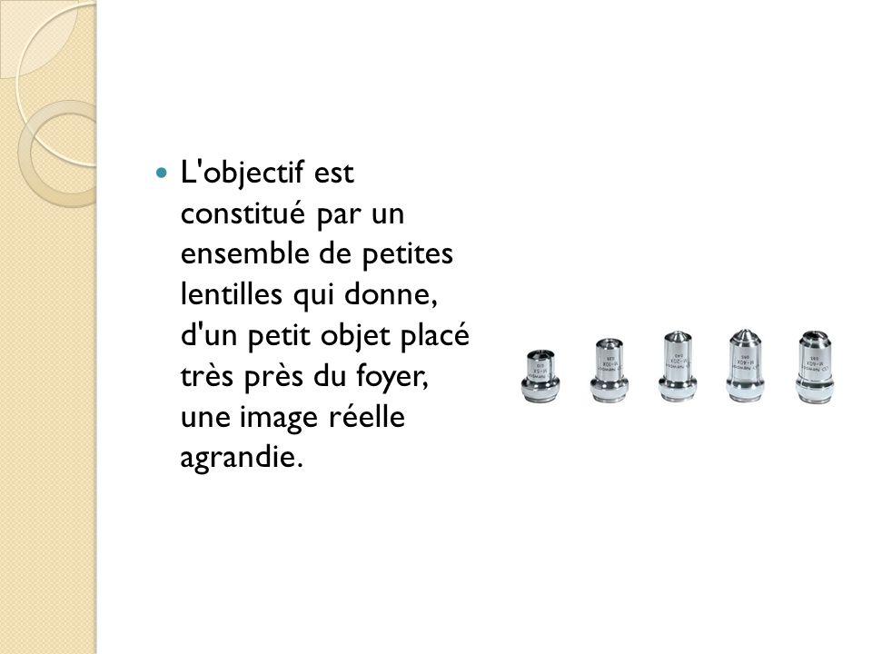 L objectif est constitué par un ensemble de petites lentilles qui donne, d un petit objet placé très près du foyer, une image réelle agrandie.