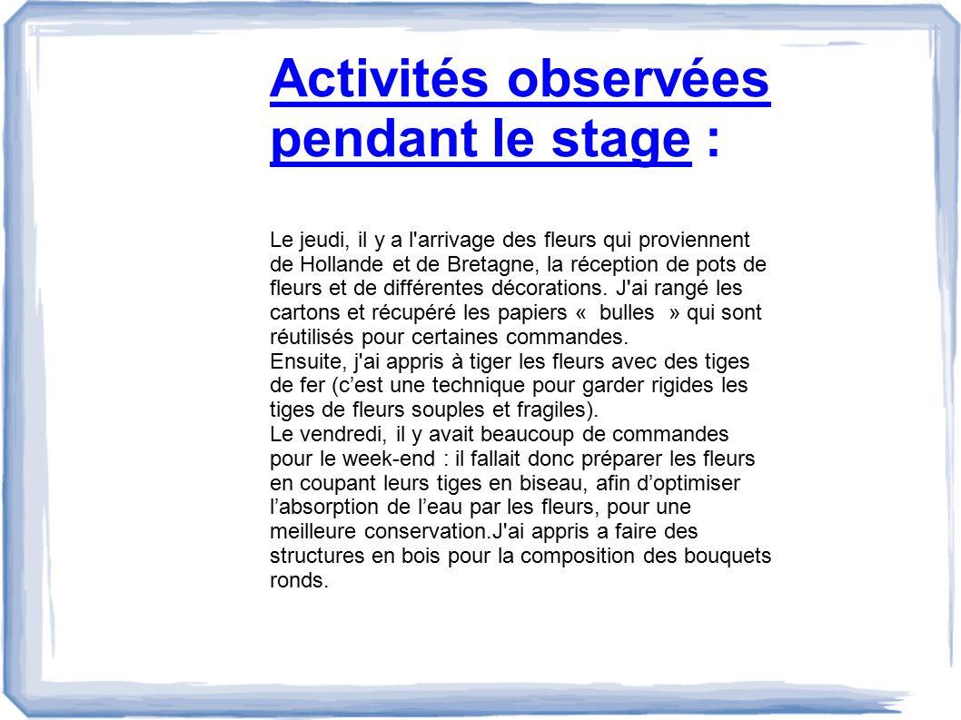 Activités observées pendant le stage :