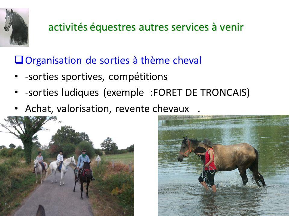 exemple de cv moniteur d u0026 39 activites equestres