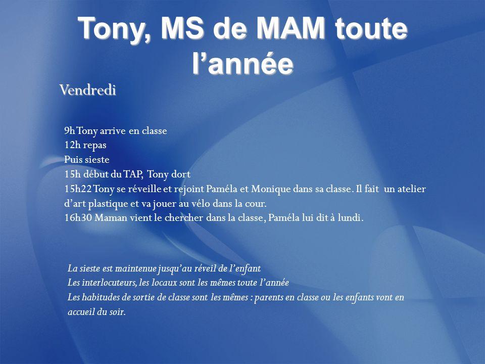 Tony, MS de MAM toute l'année