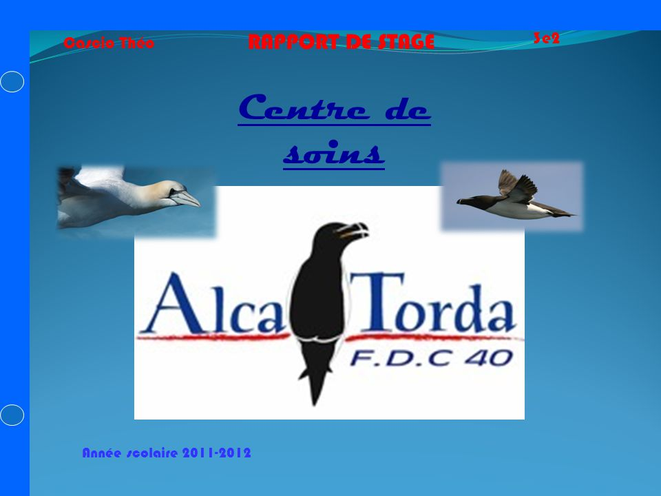 Centre de soins RAPPORT DE STAGE 3e2 Cascio Théo