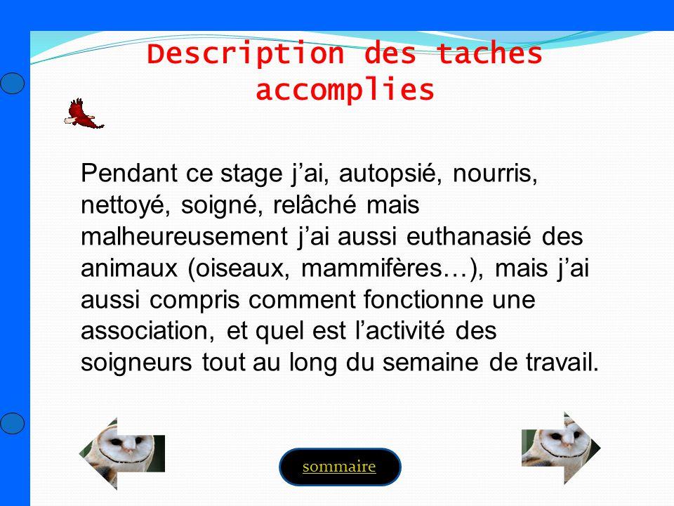 Description des taches accomplies