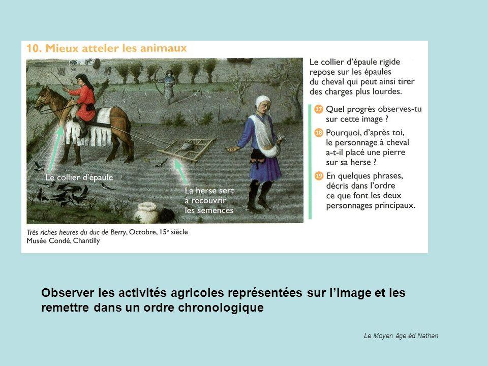 Observer les activités agricoles représentées sur l'image et les remettre dans un ordre chronologique