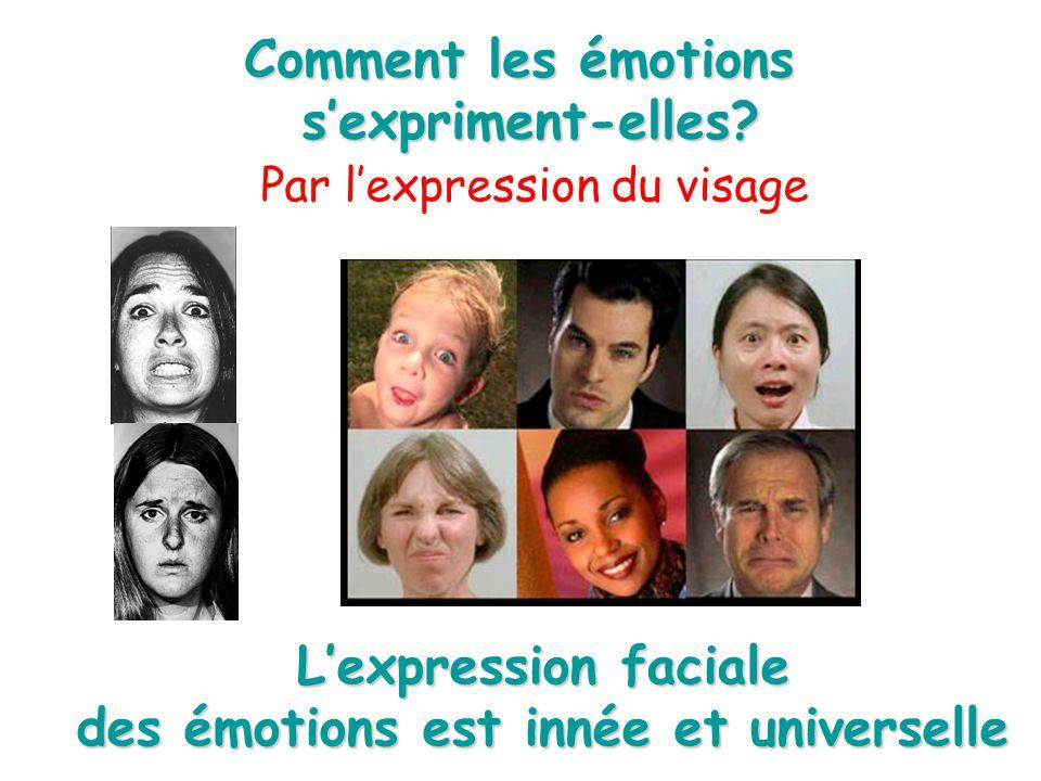 Cerveau sens et emotions ppt video online t l charger - Comment deboucher une oreille bouchee par l eau ...